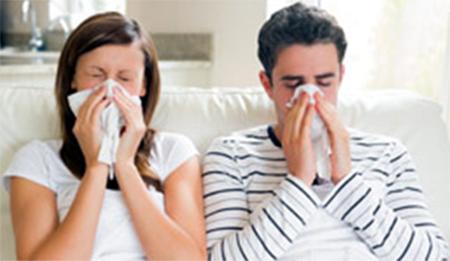 Preocupante: Más de 700 casos de gripe porcina en el Ecuador en lo que va del año