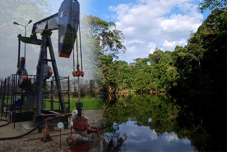 Se inició la extracción de petróleo en el Yasuní