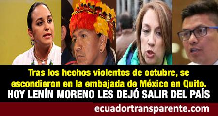 Gobierno de Lenín Moreno dio salvoconducto para que Gabriela Ribadeneira y otros salgan a México